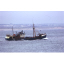 colour slide showing the trawler Grampian Eagle off Aberdeen